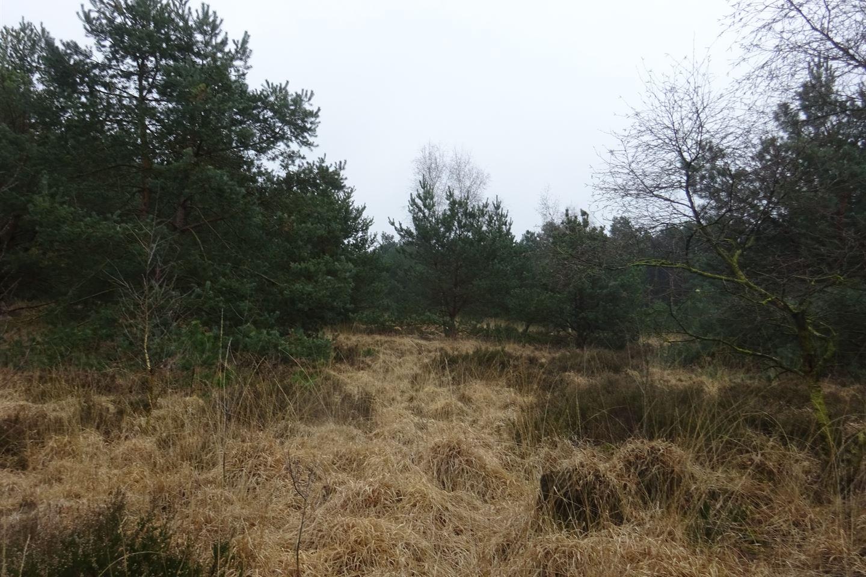 View photo 2 of Putseweg