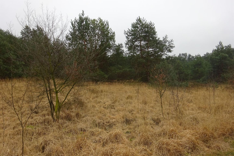 View photo 3 of Putseweg