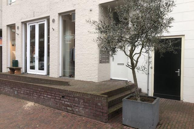 Bekijk foto 2 van Tolstraat 4 b