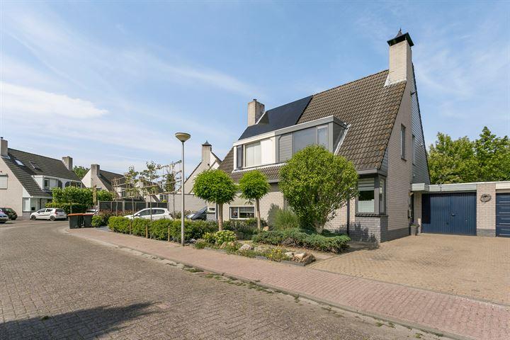 Arnold van Lieropstraat 17