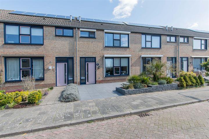 Hoogaarsstraat 56