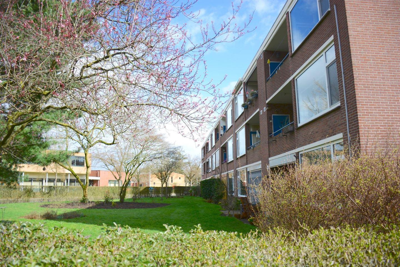 Bekijk foto 2 van Wisentstraat 32