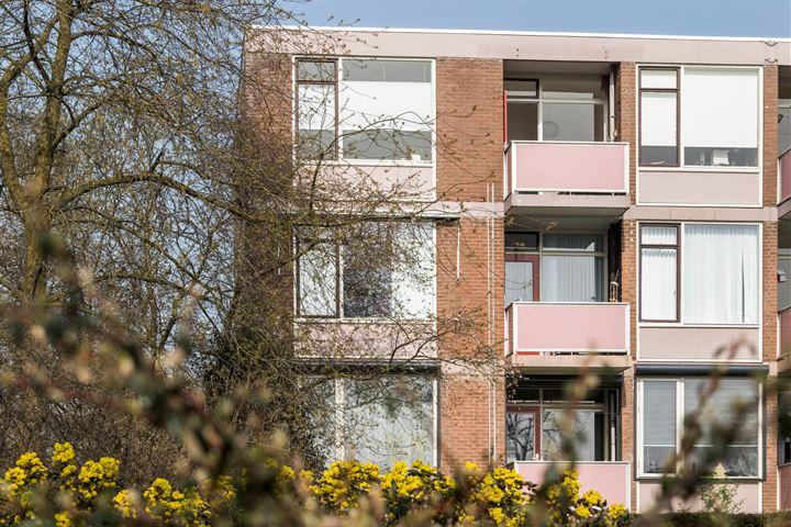 Domela Nieuwenhuisstraat 51