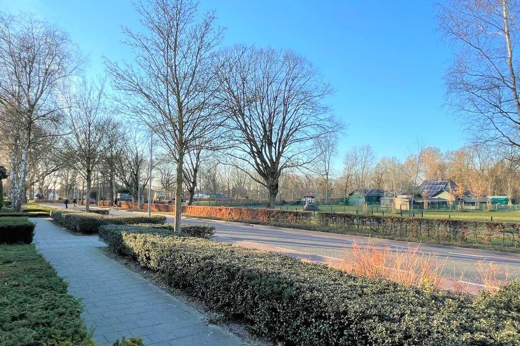 Bekijk foto 2 van Bosstraat 42