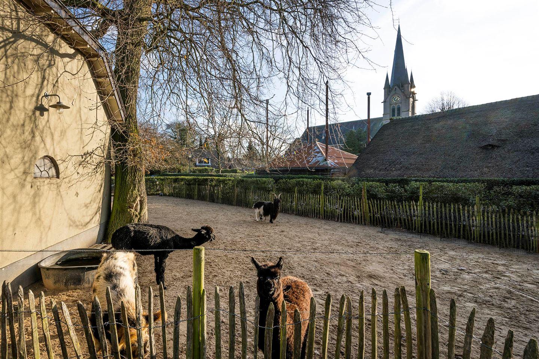 View photo 4 of Venenweg 1 *