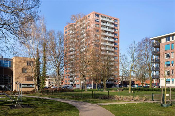 Waalstraat 195