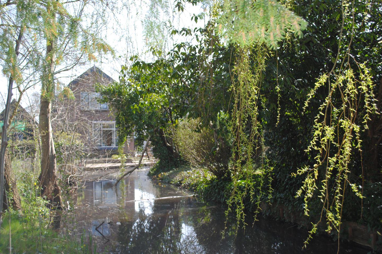 View photo 5 of Essenlaan 24