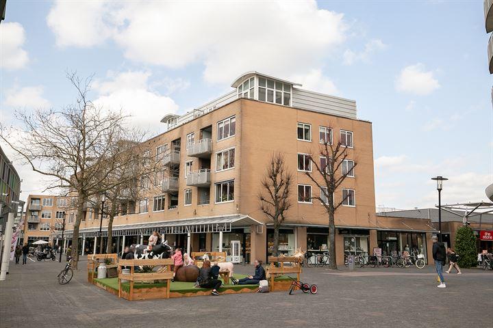 Emiclaerhof 206