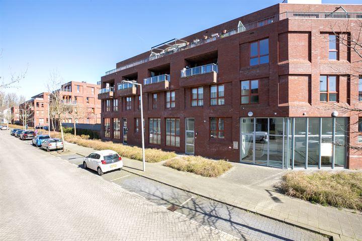 Aronskelkstraat 44