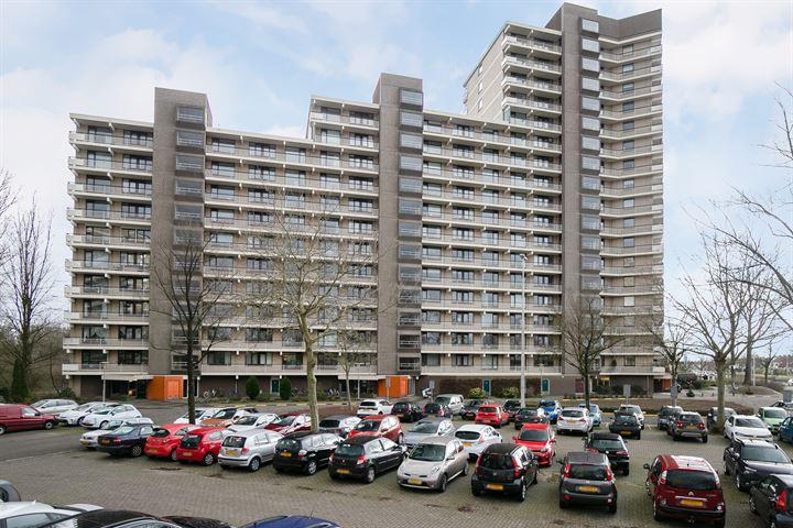 Groningensingel 647