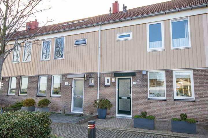 Anna van Burenlaan 124