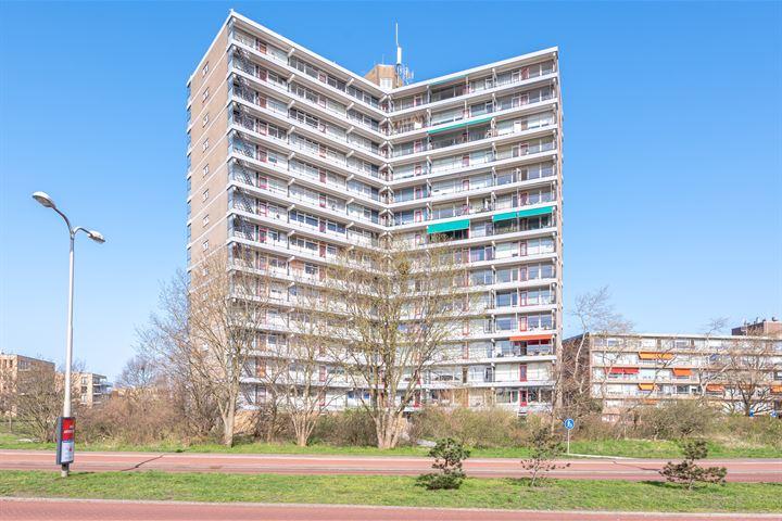 Zeewijkplein 198