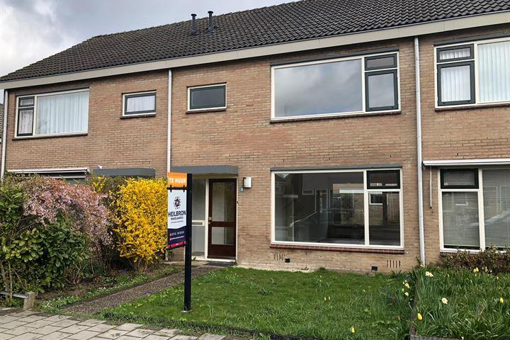 Johan de Wittstraat 26
