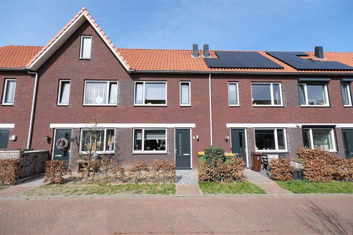 Bongeveen 48
