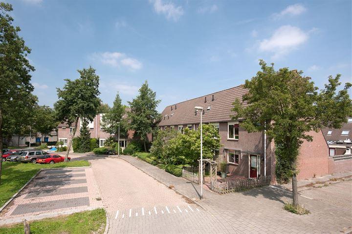 Zeusburg 6