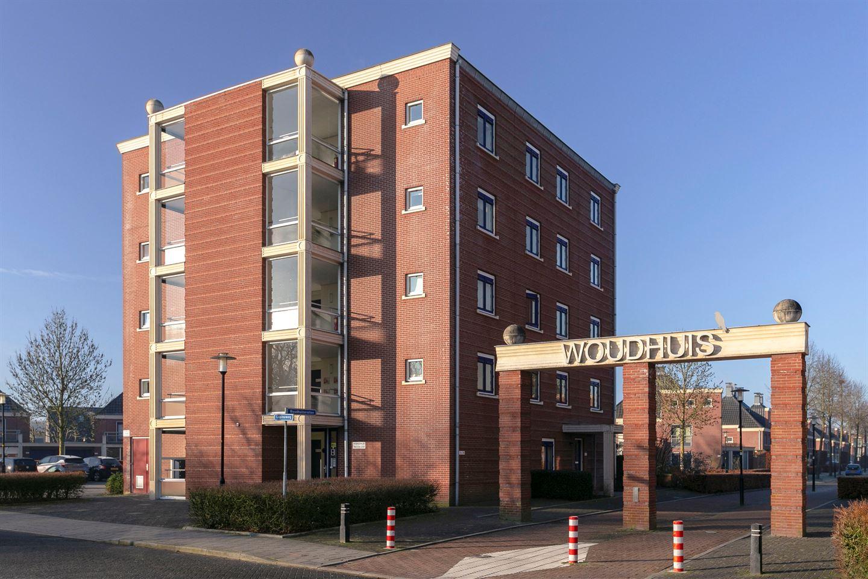 Bekijk foto 1 van Woudhuizerallee 208