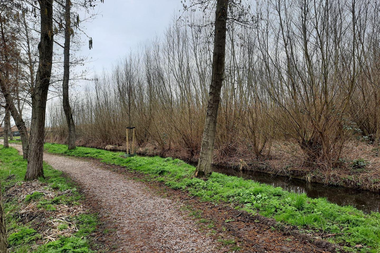 Bekijk foto 4 van Oud Schaik