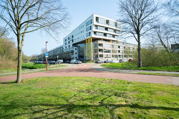 Wageningseberg 410