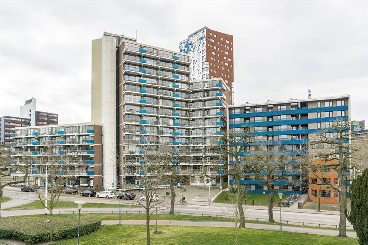 Kronenburgersingel 177