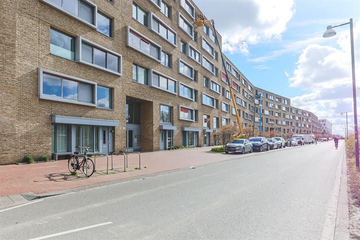 Verlengde Lodewijkstraat 44