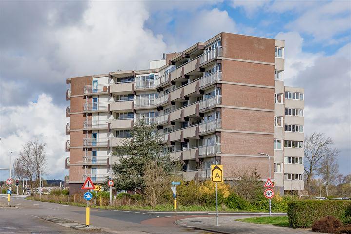 Victor van Vrieslandstraat 53