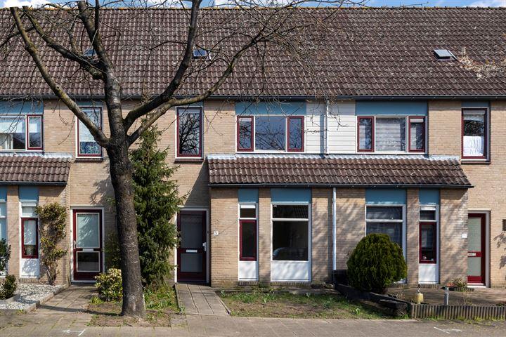 Pieter Breughelstraat 24