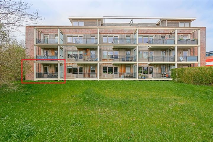 Westerpark 55