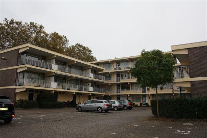 Rozenhof 59