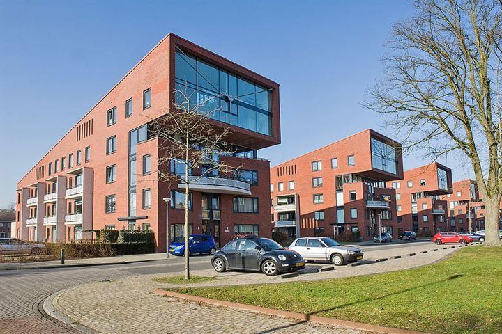 S.L. Louwesstraat 246