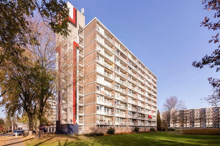 Antwerpenstraat 364