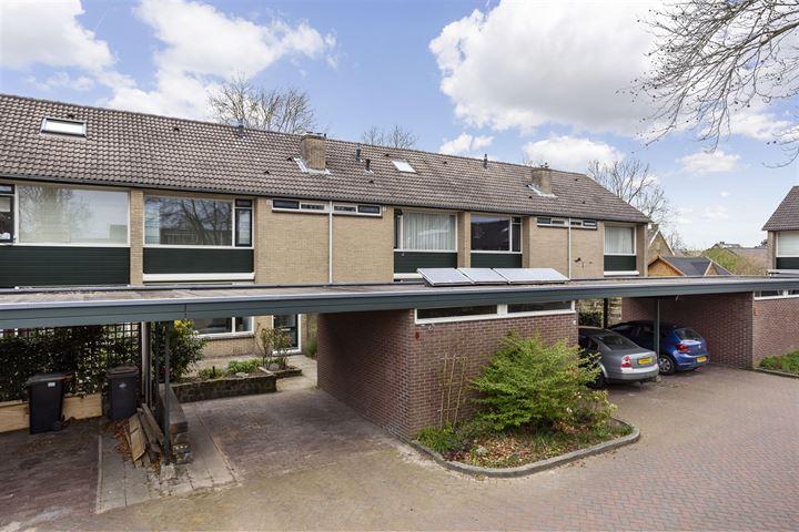 Brinkhorst 5