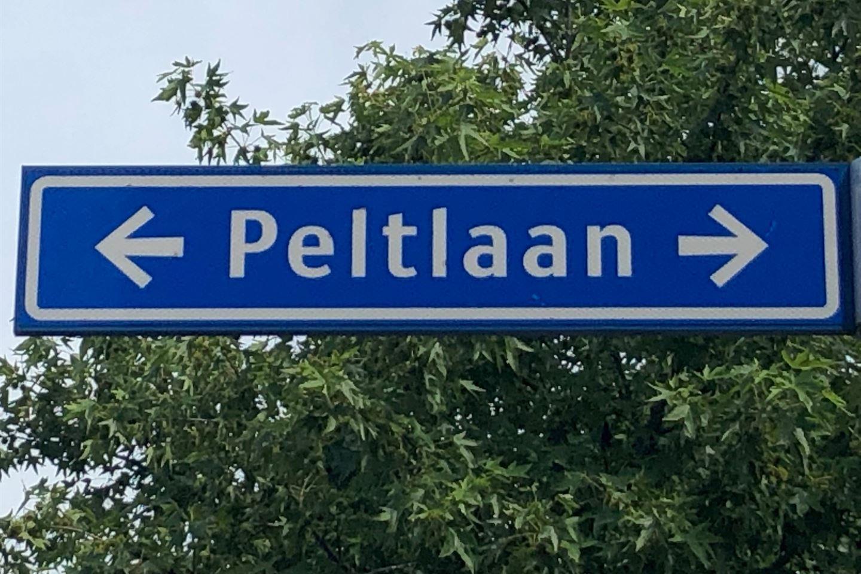 View photo 1 of Peltlaan 67
