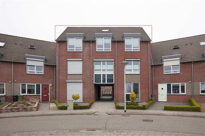 Haegerhofplein 14