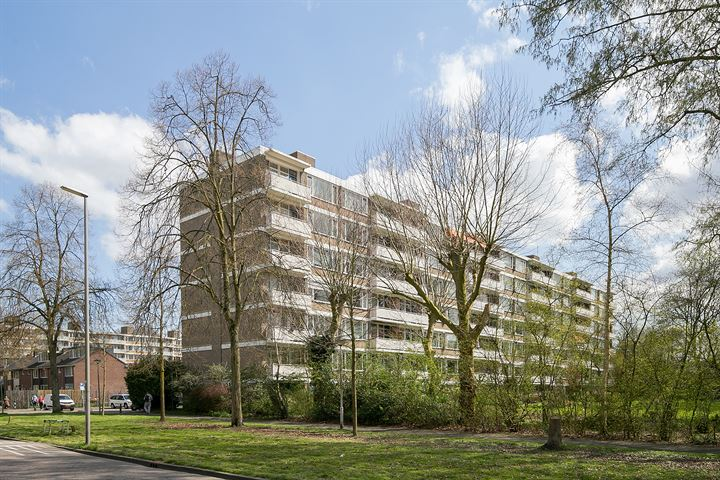Van der Helmstraat 279