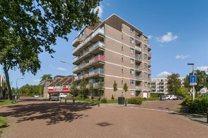Steendijk 107