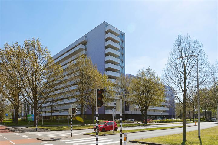 Vijfhagen 345