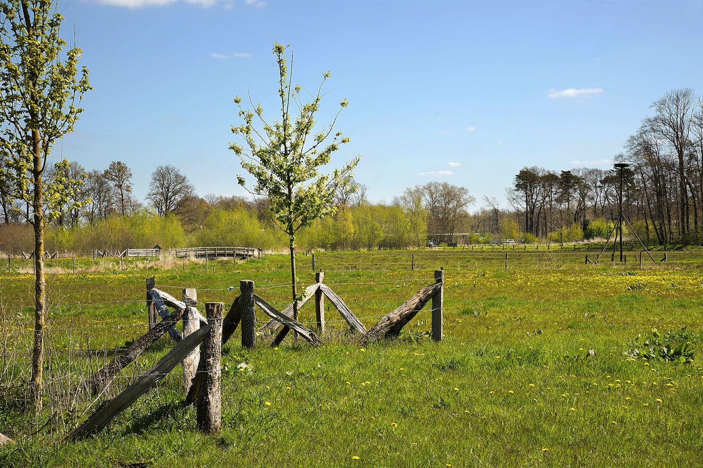 Bekijk foto 4 van Hertmerweg 18