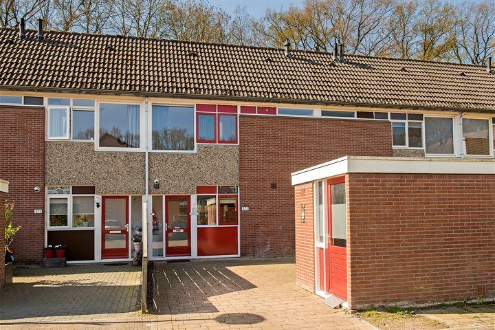Gerrit Peuscherstraat 373