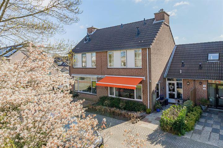 Braamhorst 50