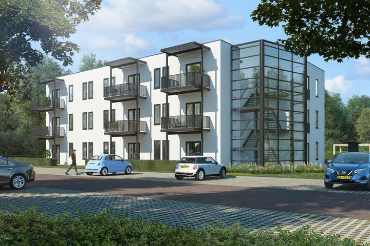 Ridderhof 2