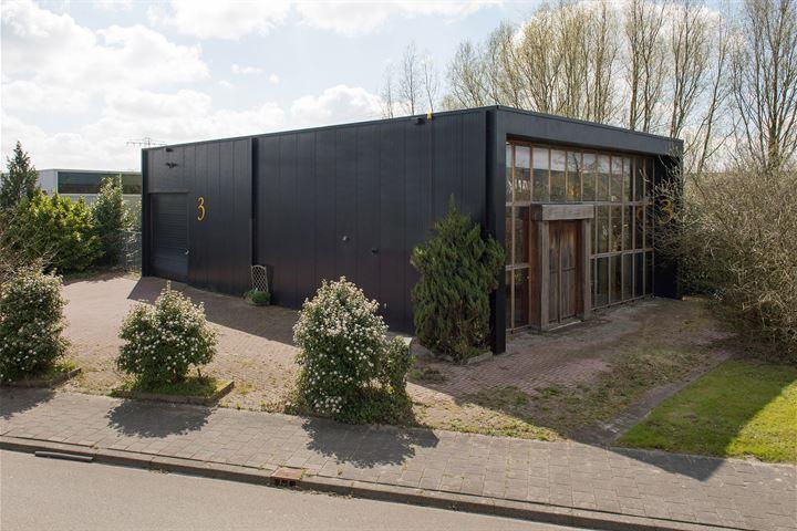 Zeedistel 3, Groningen