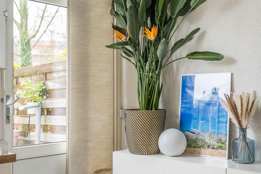 Bekijk foto 5 van Kantershof 323