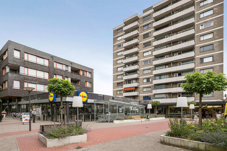 Bekijk foto 1 van Wijngaardplein 26
