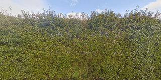 View 360° photos