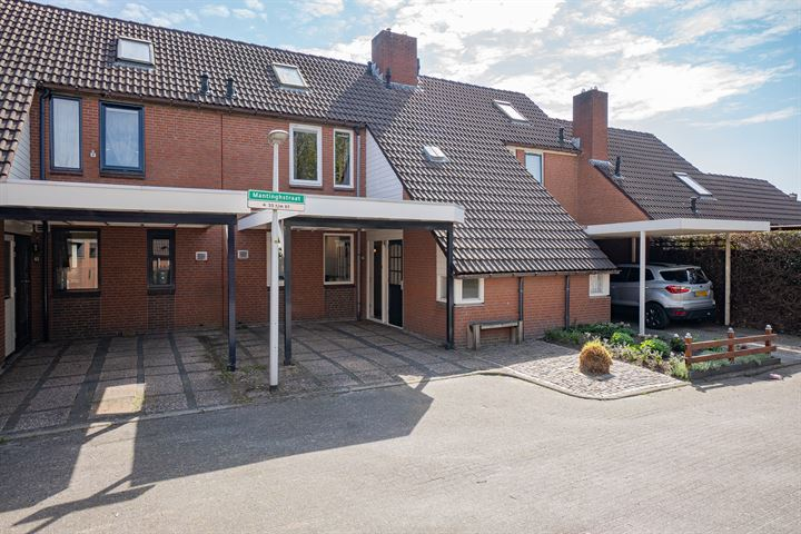 Mantinghstraat 65