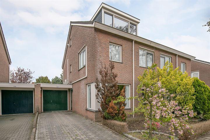 Oldenzaalsestraat 261