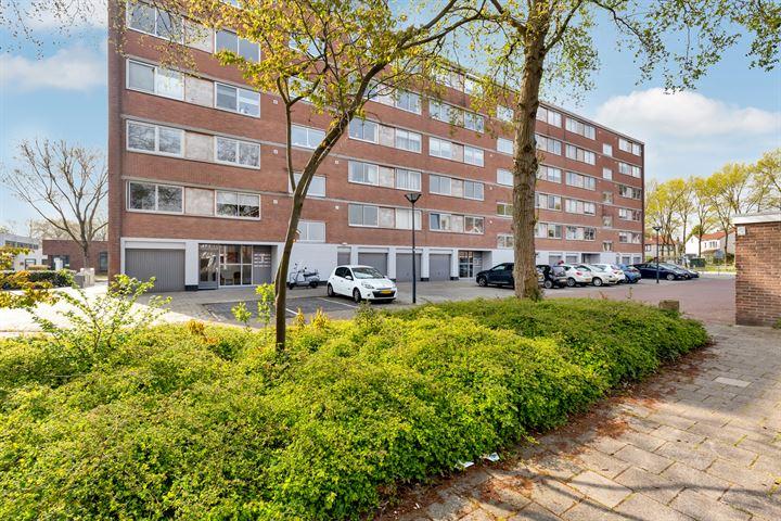 Rijnauwenstraat 250