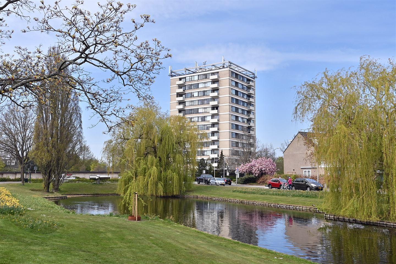Bekijk foto 3 van Graaf Willem de Oudelaan 161