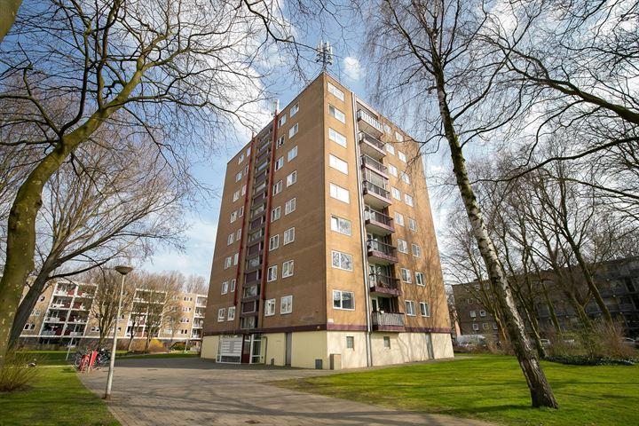Thijssestraat 193