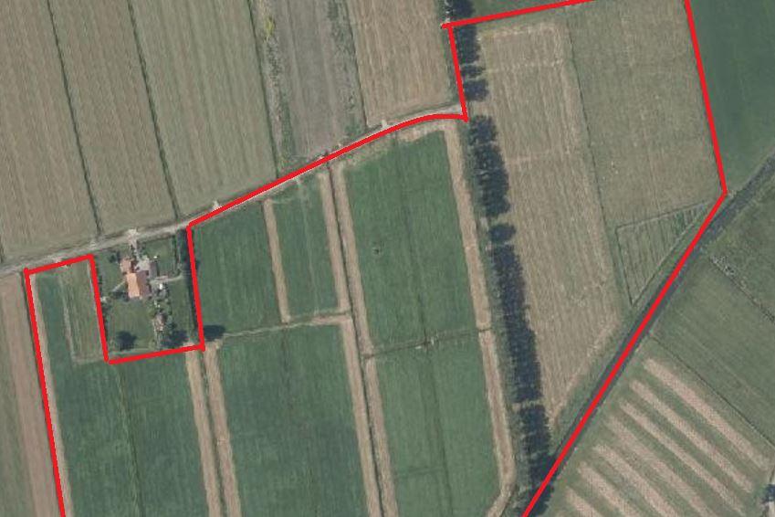 Bekijk foto 1 van Rijswijkseveldweg